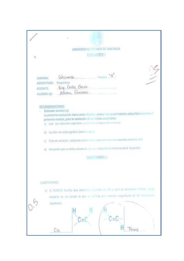 Examen de Bioquimica