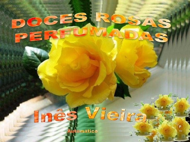Doces rosas perfumadas