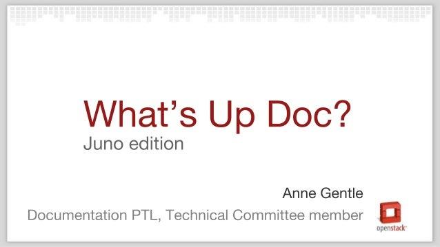 OpenStack Docs PTL Juno Update