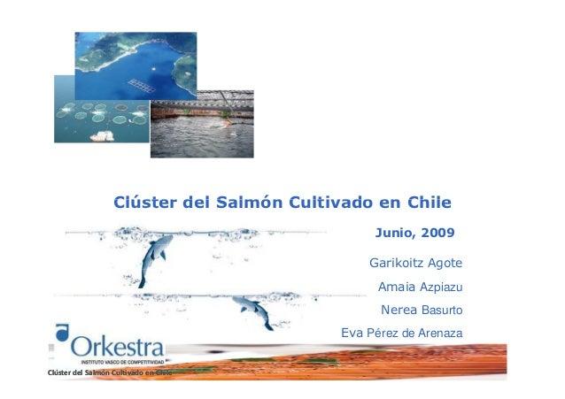 Informe final Cluster del salmon cultivado en chile junio 2009. Microeconomics of Competitiveness MOC
