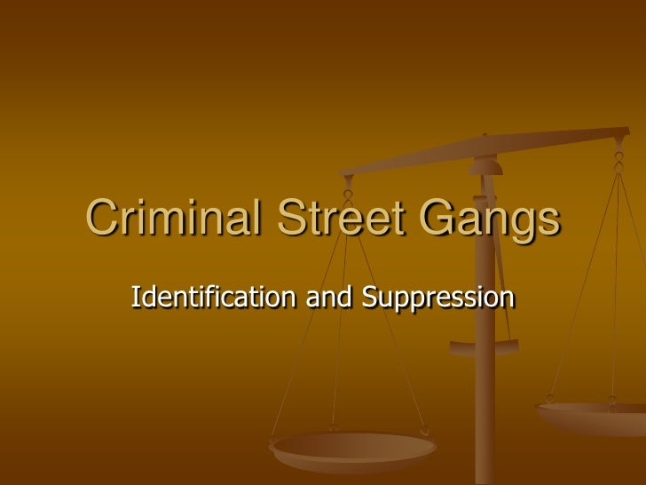 Criminal Street Gangs<br />Identification and Suppression<br />