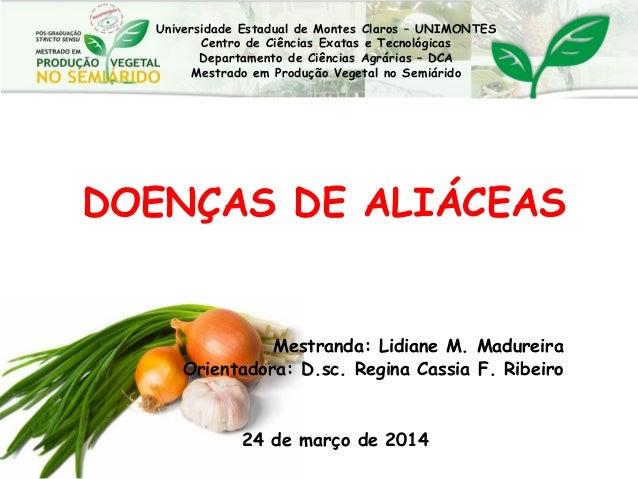 DOENÇAS DE ALIÁCEAS Mestranda: Lidiane M. Madureira Orientadora: D.sc. Regina Cassia F. Ribeiro 24 de março de 2014 Univer...