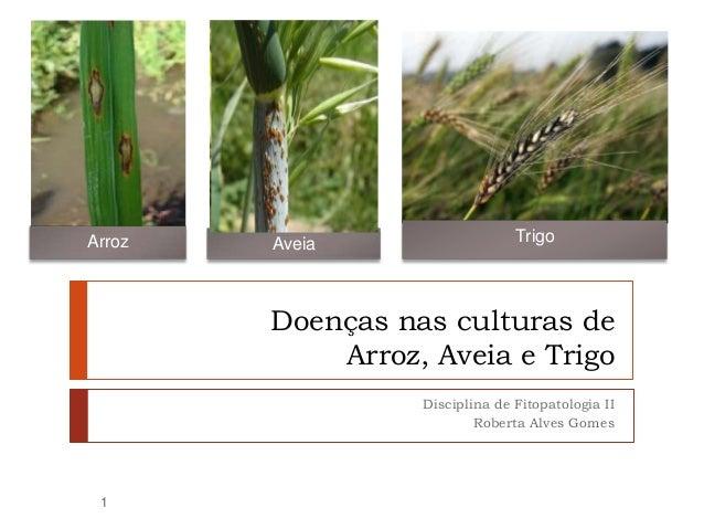 Doenças nas culturas de Arroz, Aveia e Trigo Disciplina de Fitopatologia II Roberta Alves Gomes Arroz TrigoAveia 1