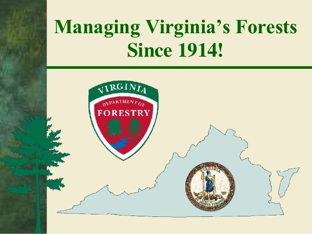 Department of Forestry -- Forest Stewardship & Conservation