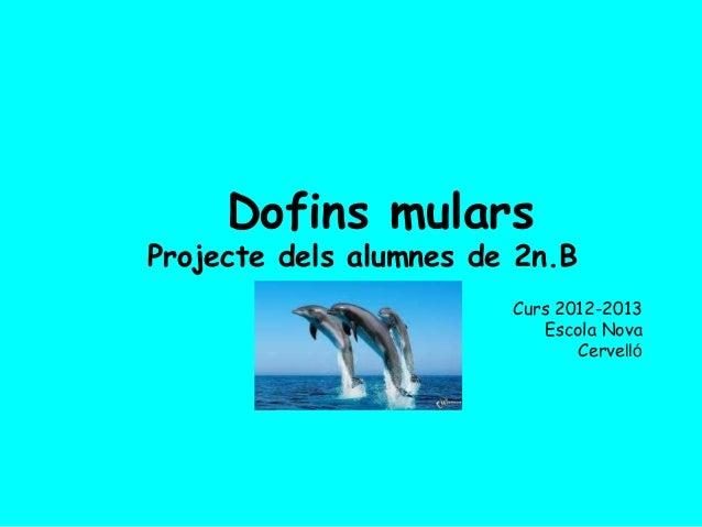 Dofins mularsProjecte dels alumnes de 2n.BCurs 2012-2013Escola NovaCervelló