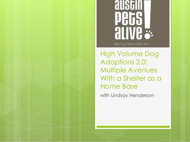 High Volume Dog Adoptions 2.0: Multiple Avenues With a Shelter as a Home Base with Lindsay Henderson