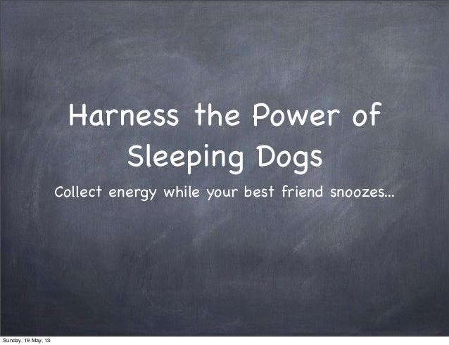 Harness the Power of Sleeping Dogs - Chindogu