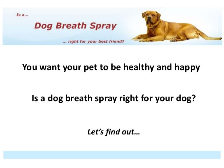 Why are we here?You want your pet to be healthy and happy  Is a dog breath spray right for your dog?                   Let...