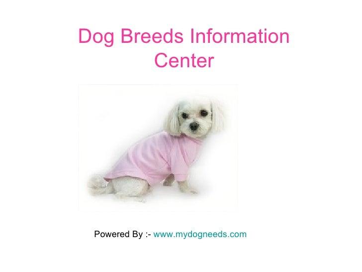 Dog Breeds Information Center Powered By :-  www.mydogneeds.com