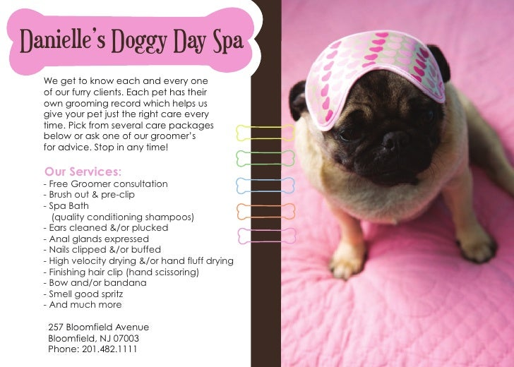 Dog grooming flyer for A touch of class pet salon
