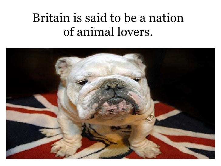 Britain is said to be a nation of animal lovers.