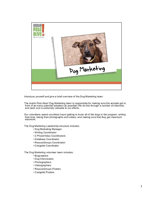 Introduce yourself and give a brief overview of the Dog Marketing team: The Austin Pets Alive! Dog Marketing team is respo...
