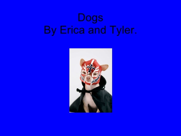Dogs By Erica and Tyler.