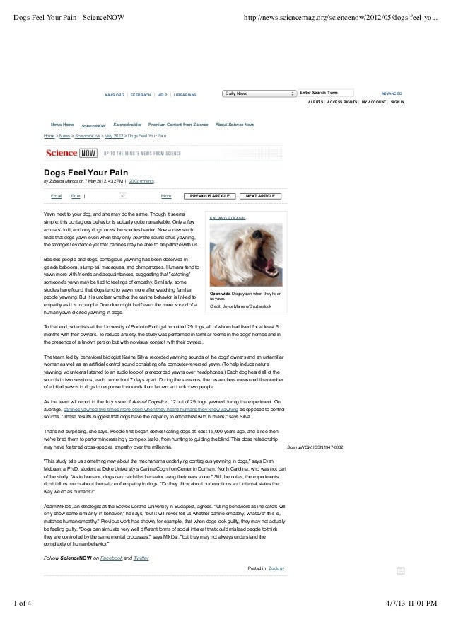 Dogs Feel Your Pain - ScienceNOW                                                                              http://news....