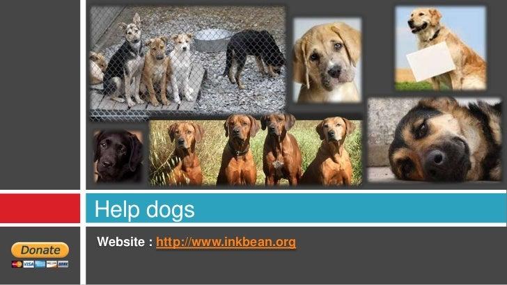 Help dogsWebsite : http://www.inkbean.org