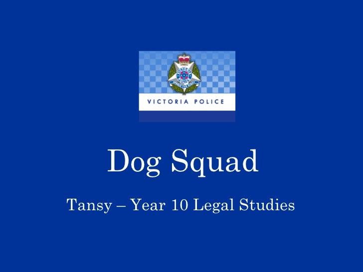 Dog Squad Tansy – Year 10 Legal Studies