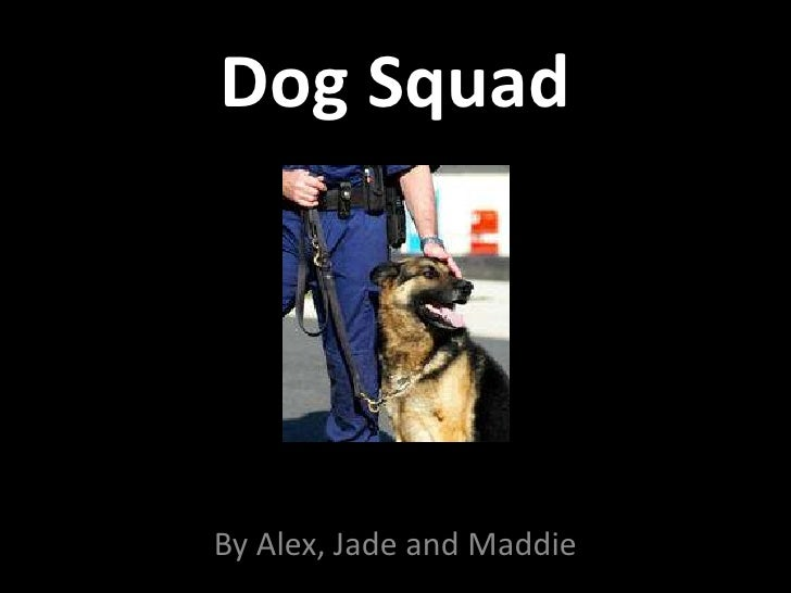 Dog Squad<br />By Alex, Jade and Maddie<br />