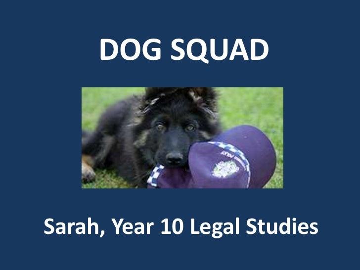 DOG SQUAD<br />Sarah, Year 10 Legal Studies<br />