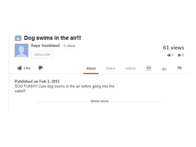 Dog views