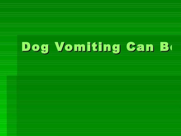 Dog Vomiting Can Be Serious – How to Take Care of Your Dog Vomiting Problem