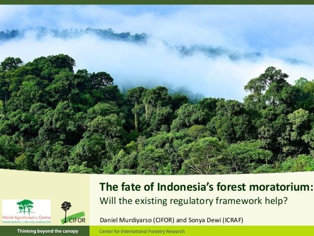 The fate of Indonesia's forest moratorium:Will the existing regulatory framework help?Daniel Murdiyarso (CIFOR) and Sonya ...