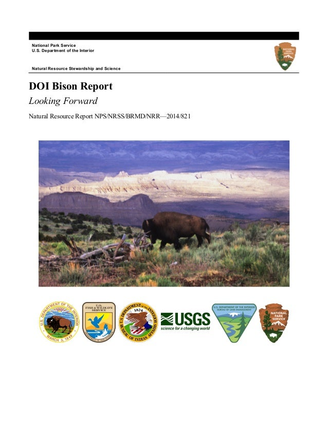 National Park Service U.S. Department of the Interior Natural Resource Stewardship and Science DOI Bison Report Looking Fo...