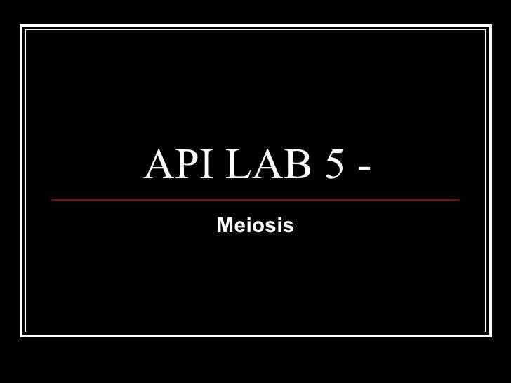 API LAB 5 - Meiosis