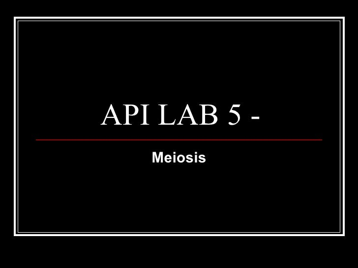 A&P lab 1 lecture 5 meiosis