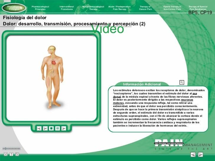 Video BP5, CP19 Fisiología del dolor Dolor: desarrollo, transmisión, procesamiento y percepción (2) Información Adicional ...