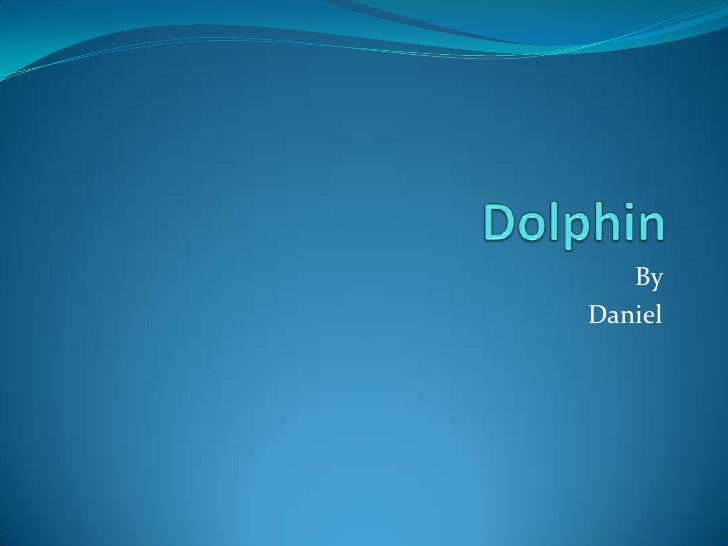Dolphin<br />By  <br />Daniel<br />