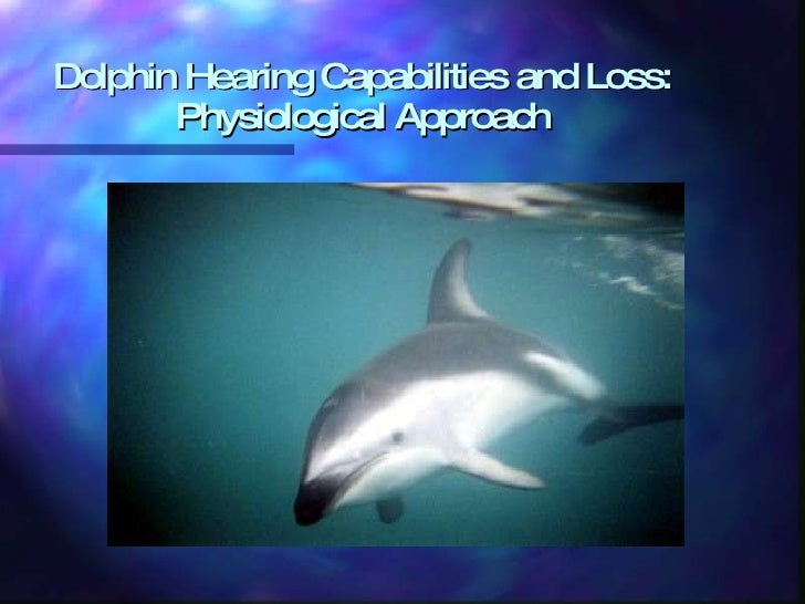 Dolphin Hearing Capabilities and Loss: Physiological Approach
