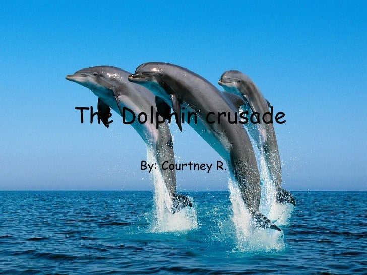 The Dolphin crusade  By: Courtney R.