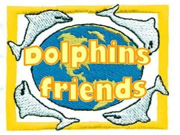 dolphins friends