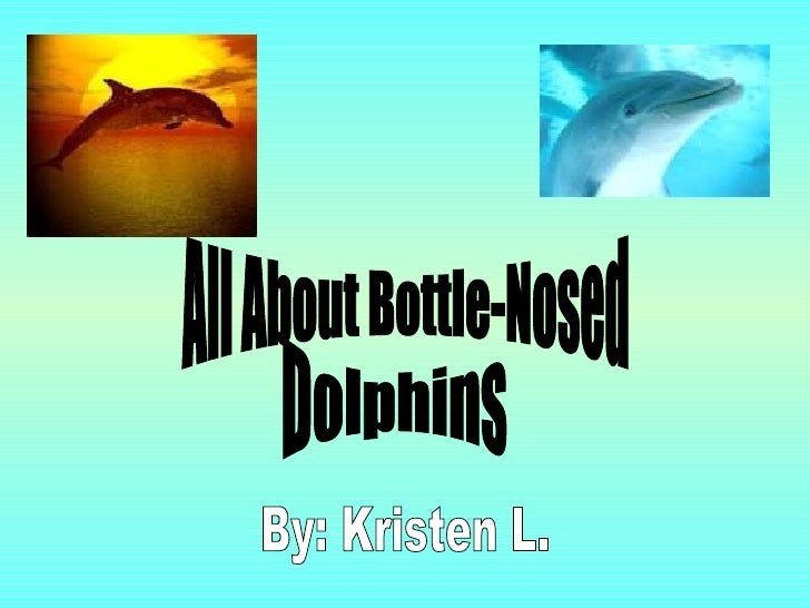 All About Bottle-Nosed Dolphins By: Kristen L.