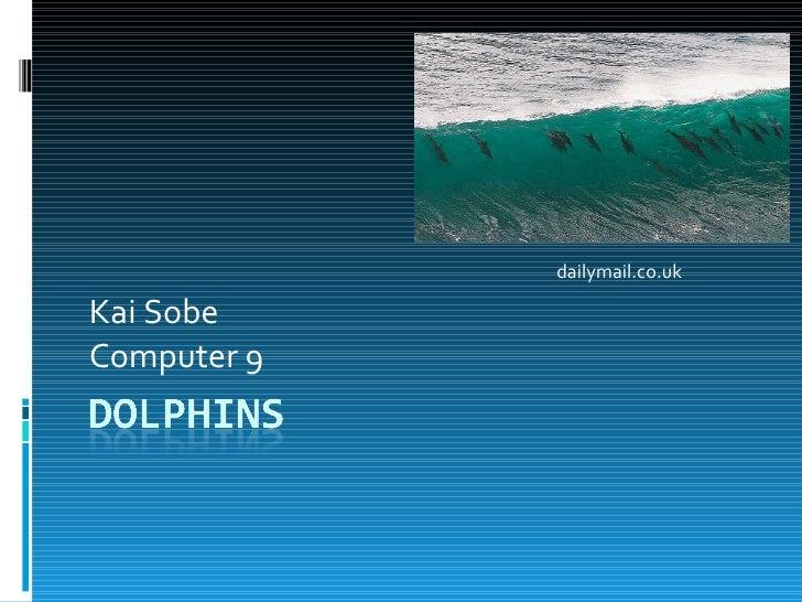 Kai Sobe  Computer 9 dailymail.co.uk