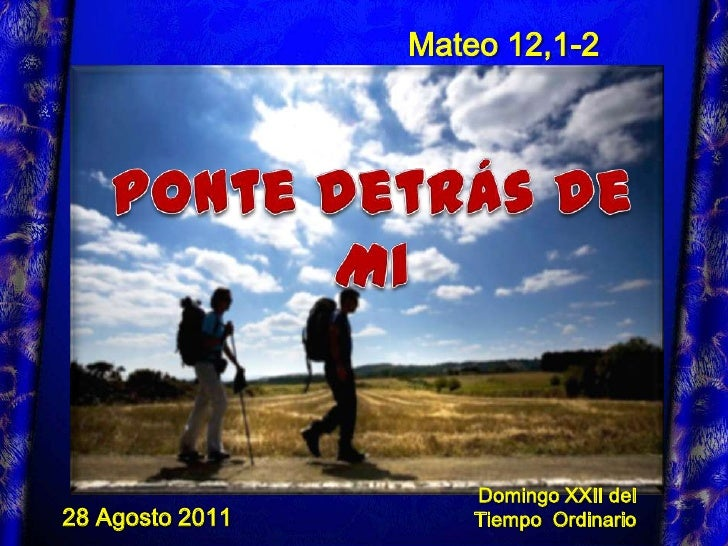 Dom 22 a11