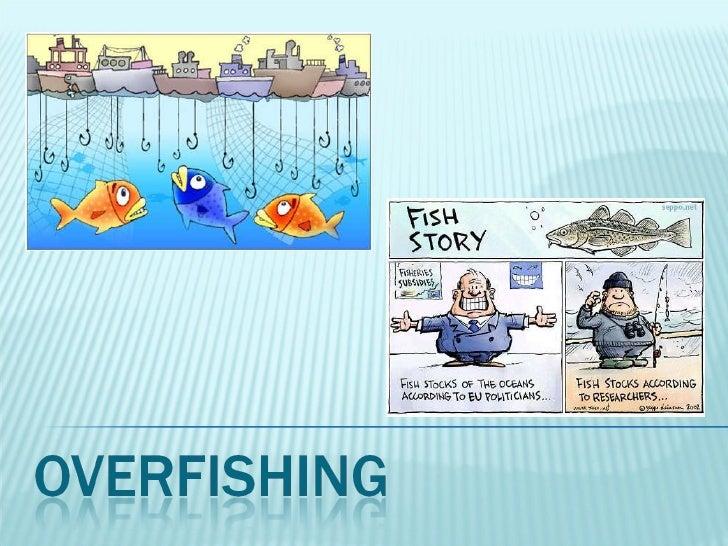 2011 10.5 overfishing