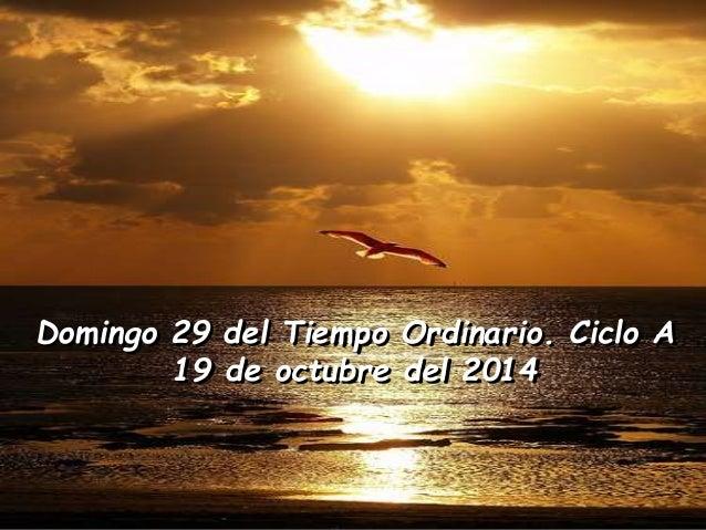 Domingo 29 del Tiempo Ordinario. Ciclo A  19 de octubre del 2014