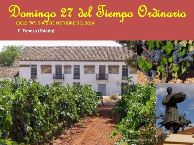 """Domingo 27 del Tiempo Ordinario  CICLO """"A"""". DIA 5 DE OCTUBRE DEL 2014  El Toboso (Toledo)"""