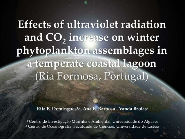 Effects of climate change on phytoplankton
