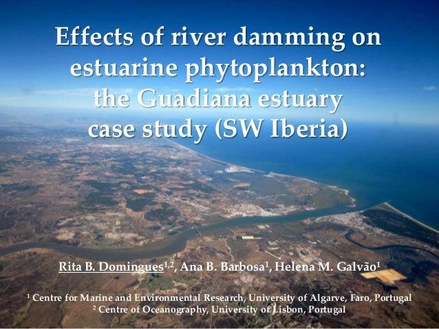 Effects of river damming onestuarine phytoplankton:the Guadiana estuarycase study (SW Iberia)Rita B. Domingues1,2, Ana B. ...