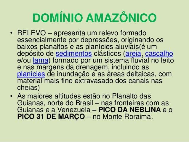 Resultado de imagem para dominio amazonico