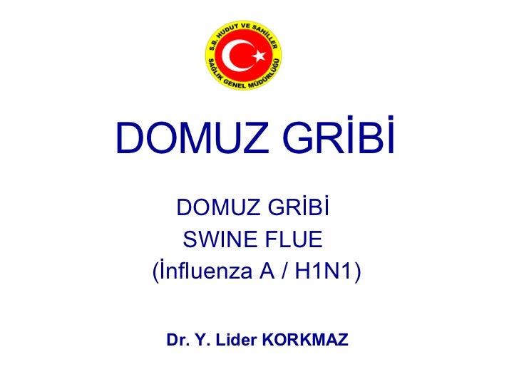 Domuz Gribi