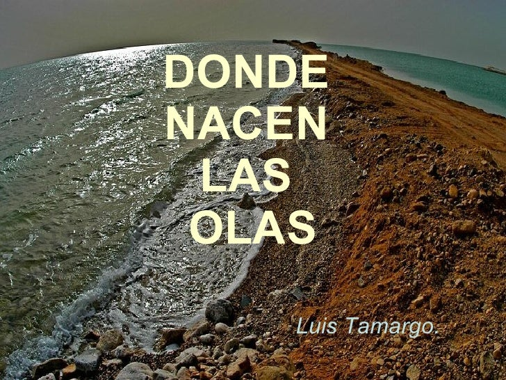 DONDE  NACEN  LAS  OLAS Luis Tamargo.