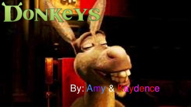 Donkeys presentation   me and amy -) (1)
