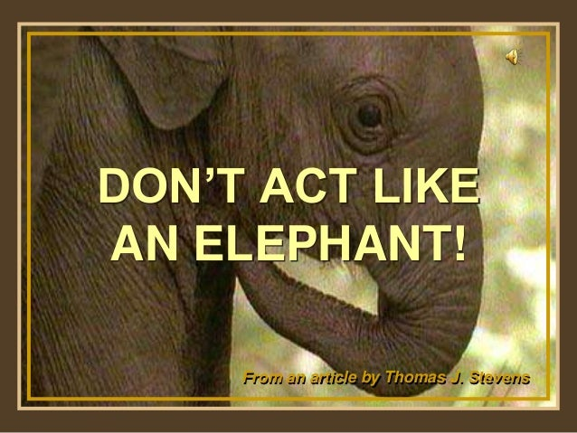 Show by Martha Please Don't Change any of the content. Happy viewing! Turn on your speakers! DON'T ACT LIKE AN ELEPHANT! F...