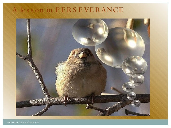 A lesson in PERSEVERANCE FINWIZE INVESTMENTS