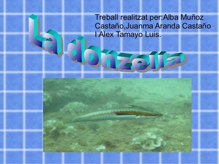 Treball realitzat per:Alba Muñoz Castaño,Juanma Aranda Castaño  I  Alex Tamayo Luis. La donzella
