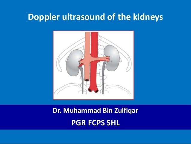 Doppler ultrasound of the kidneys 1