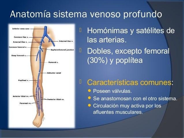 El tratamiento después de la operación varikoz de los pies